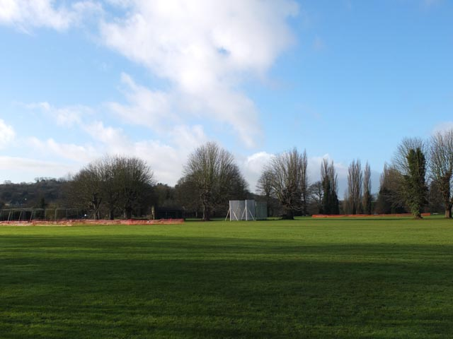 Cricket pitch